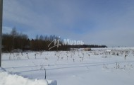 деревня Тимофеево