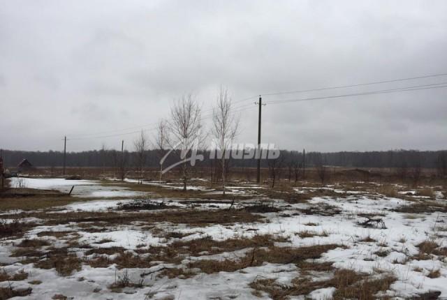 Фото -  деревня Сорочнево