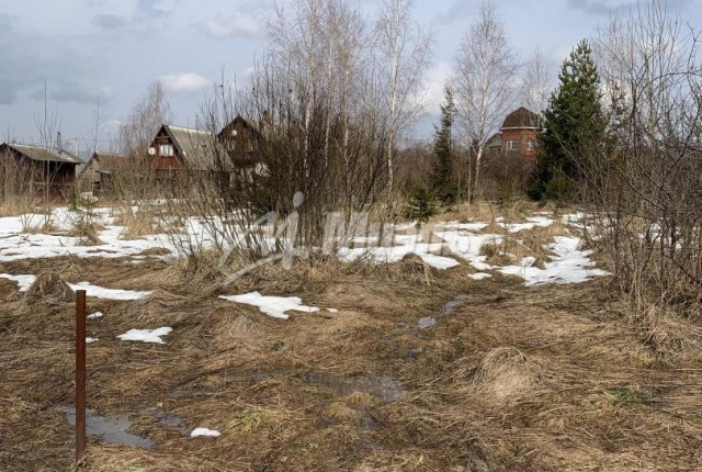 Фото -  деревня Старая Руза д.38