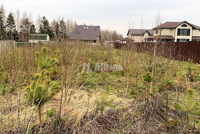 Фото -  коттеджный посёлок Захарьино-2, Лесная