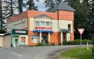 деревня Подушкино д.90А