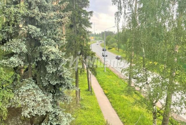 Фото -  деревня Подушкино д.90А