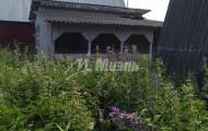 садовое товарищество Раменка-1