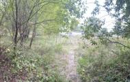 деревня Кожино, Можайское ш. 70 км от МКАД